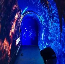 青岛隧道LED显示屏案例